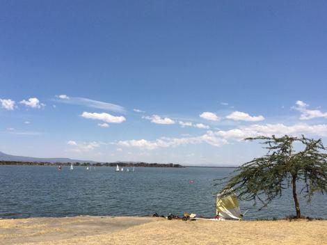 sailing blue skies