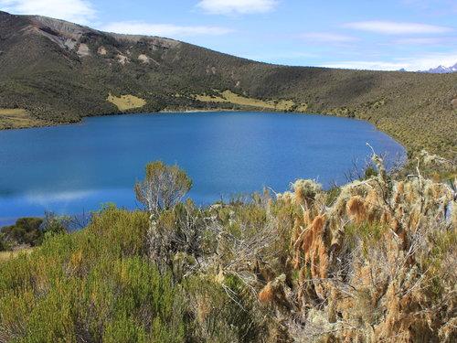 lake alice