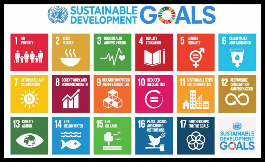 I support the global SDGs